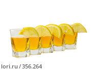 Купить «Стопка и лимон», фото № 356264, снято 23 июня 2008 г. (c) Рыбин Павел / Фотобанк Лори