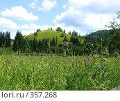 Купить «Луг и церковь», фото № 357268, снято 23 июня 2008 г. (c) Анна Янкун / Фотобанк Лори