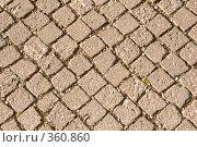 Купить «Дорожная плитка из камня», фото № 360860, снято 28 июня 2008 г. (c) Светлана Силецкая / Фотобанк Лори