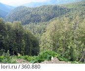 Купить «Северный Кавказ», фото № 360880, снято 11 июля 2008 г. (c) Влад / Фотобанк Лори