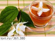 Купить «Жасминовый чай», фото № 361380, снято 8 июля 2008 г. (c) Елена Блохина / Фотобанк Лори