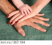 Купить «Руки родителей и маленького ребенка», фото № 367184, снято 17 июля 2018 г. (c) Losevsky Pavel / Фотобанк Лори