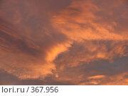 Купить «Небесные пейзажи», фото № 367956, снято 22 июля 2008 г. (c) Владимир Тимошенко / Фотобанк Лори