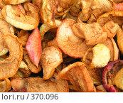 Купить «Сушеные яблоки. Август.», фото № 370096, снято 26 августа 2007 г. (c) Галина Бурцева / Фотобанк Лори
