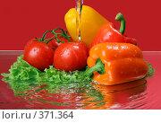 Купить «Овощное ассорти под струей воды», фото № 371364, снято 23 июля 2008 г. (c) Igor Lijashkov / Фотобанк Лори