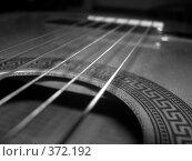 Купить «Струны гитары», фото № 372192, снято 25 июля 2008 г. (c) Алешина Екатерина / Фотобанк Лори