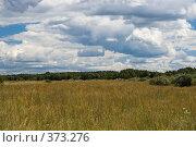 Купить «Поле», фото № 373276, снято 21 июля 2007 г. (c) Андрей Некрасов / Фотобанк Лори