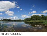 Купить «Озеро Молдино. Тверская область.», фото № 382880, снято 16 июля 2008 г. (c) Olya&Tyoma / Фотобанк Лори