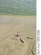 Купить «Розовый сланец лежит на песке возле воды», фото № 383036, снято 21 мая 2018 г. (c) Михаил Ковалев / Фотобанк Лори