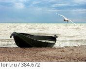 Купить «Одинокая чайка», фото № 384672, снято 4 июля 2005 г. (c) Роман Бурдыко / Фотобанк Лори