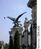 Купить «Птички», фото № 384696, снято 18 июня 2006 г. (c) Светлана Попова / Фотобанк Лори