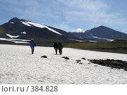 Купить «Путь к кратеру Мутновского вулкана. Камчатка.», фото № 384828, снято 9 сентября 2006 г. (c) Анатолий Никитин / Фотобанк Лори
