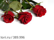 Купить «Три алые розы на белом фоне», фото № 389996, снято 26 января 2008 г. (c) Евгений Дробжев / Фотобанк Лори