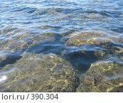 Купить «Тайны Средиземного моря», фото № 390304, снято 5 июля 2007 г. (c) Алла Кригер / Фотобанк Лори