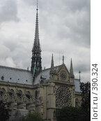 Купить «Собор Парижской Богоматери», фото № 390324, снято 27 июня 2007 г. (c) Алла Кригер / Фотобанк Лори