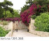 Купить «Родос. Старый город», фото № 391368, снято 14 мая 2008 г. (c) Хименков Николай / Фотобанк Лори