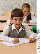 Купить «Школьники на уроке», фото № 393796, снято 19 августа 2007 г. (c) Татьяна Белова / Фотобанк Лори