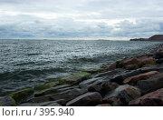 Купить «Финский залив», фото № 395940, снято 3 августа 2008 г. (c) Андрей Некрасов / Фотобанк Лори