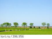 Нижний парк, Петергоф. Редакционное фото, фотограф Михаил Ерченко / Фотобанк Лори