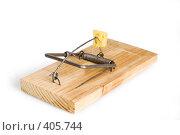 Купить «Мышеловка с сыром», фото № 405744, снято 19 июля 2008 г. (c) Андрей Рыбачук / Фотобанк Лори