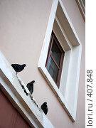 Купить «Голуби на карнизе», фото № 407848, снято 17 августа 2008 г. (c) Ekaterina Chernenkova / Фотобанк Лори