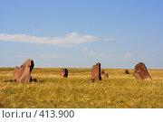 Купить «Древние могильные камни в степи Хакасии. Хакасия, Сибирь, Россия.», фото № 413900, снято 31 мая 2008 г. (c) Валерий Крывша / Фотобанк Лори