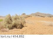 Купить «Аравийская пустыня. Египет», фото № 414892, снято 18 апреля 2008 г. (c) Иванов Аркадий Николаевич / Фотобанк Лори