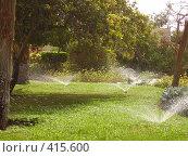 Утренний полив газонов в Египте! Стоковое фото, фотограф Андрей Русаков / Фотобанк Лори