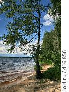 """Купить «Озеро """"Селигер"""" (о. Волго)», фото № 416856, снято 27 июля 2008 г. (c) Александр Секретарев / Фотобанк Лори"""
