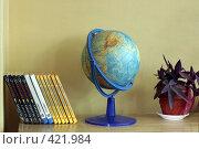Купить «Учебники, глобус и цветок на полке в школе», эксклюзивное фото № 421984, снято 23 августа 2008 г. (c) Татьяна Белова / Фотобанк Лори