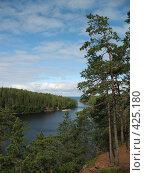 Купить «Валаамский берег, вид на залив», фото № 425180, снято 6 августа 2008 г. (c) Морковкин Терентий / Фотобанк Лори