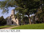 Купить «Москва. Спасский собор Спасо-Андроникова монастыря.», фото № 425204, снято 9 августа 2008 г. (c) Julia Nelson / Фотобанк Лори