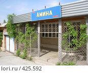 Купить «Кафе в Бишкеке», фото № 425592, снято 6 мая 2005 г. (c) Михаил Браво / Фотобанк Лори