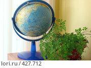 Купить «Глобус и цветок на полке в школе», фото № 427712, снято 23 августа 2008 г. (c) Татьяна Белова / Фотобанк Лори