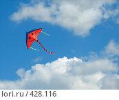 Купить «Улыбающийся воздушный змей», фото № 428116, снято 2 августа 2008 г. (c) Kribli-Krabli / Фотобанк Лори