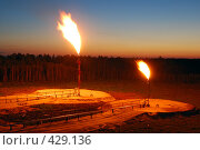 Купить «Факел», фото № 429136, снято 6 июня 2008 г. (c) Жданович Юрий / Фотобанк Лори