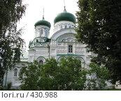 Купола Святой Троицы в зелени деревьев. Стоковое фото, фотограф Ирина Трофимова / Фотобанк Лори