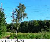 Летний пейзаж, эксклюзивное фото № 434372, снято 25 июля 2008 г. (c) lana1501 / Фотобанк Лори