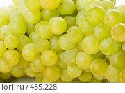 Купить «Фон из свежего сочного винограда», фото № 435228, снято 24 августа 2008 г. (c) Мельников Дмитрий / Фотобанк Лори