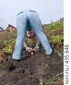 Купить «Русские национальные забавы. Копаем картофель», фото № 435848, снято 31 августа 2008 г. (c) Ирина Солошенко / Фотобанк Лори