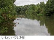 Купить «Река, заросшая деревьями», фото № 438348, снято 8 августа 2008 г. (c) Малютин Павел / Фотобанк Лори