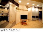 Купить «Часть гостиной и кухни», фото № 439704, снято 3 сентября 2008 г. (c) Vdovina Elena / Фотобанк Лори