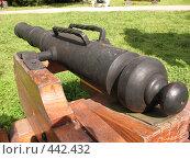Купить «Пушка-малютка», фото № 442432, снято 5 августа 2008 г. (c) Морковкин Терентий / Фотобанк Лори