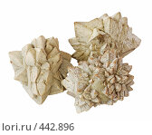 Купить «Минералы - беломорские рогульки - глендонит», фото № 442896, снято 20 августа 2008 г. (c) pzAxe / Фотобанк Лори
