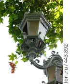 Купить «Улица разбитых фонарей», фото № 443892, снято 25 июля 2008 г. (c) Ирина Литвин / Фотобанк Лори