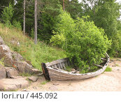 Купить «Лодка с выросшим в ней кустом. Берег острова Валаам», фото № 445092, снято 6 августа 2008 г. (c) Заноза-Ру / Фотобанк Лори