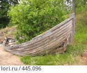 Купить «Лодка с выросшим в ней кустом. Берег острова Валаам», фото № 445096, снято 6 августа 2008 г. (c) Заноза-Ру / Фотобанк Лори