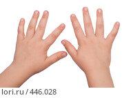 Купить «Руки», фото № 446028, снято 7 августа 2008 г. (c) Насыров Руслан / Фотобанк Лори