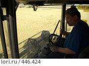Купить «Уборка зерновых», фото № 446424, снято 7 сентября 2008 г. (c) Талдыкин Юрий / Фотобанк Лори