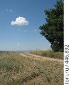 Купить «Облачко у дороги», фото № 446892, снято 20 августа 2007 г. (c) Артём Дудкин / Фотобанк Лори